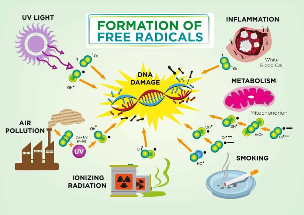 Formation of free radical