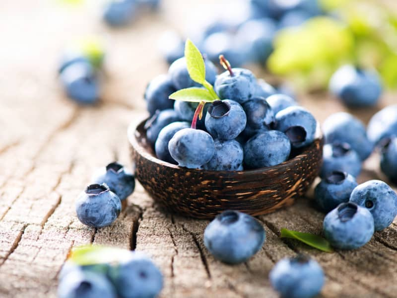 Blueberries antioxidants for anti-aging skincare
