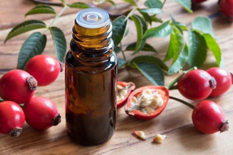 Rosehip seed oil for making anti-aging face creams